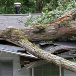 3 Common Problems Homeowners Face