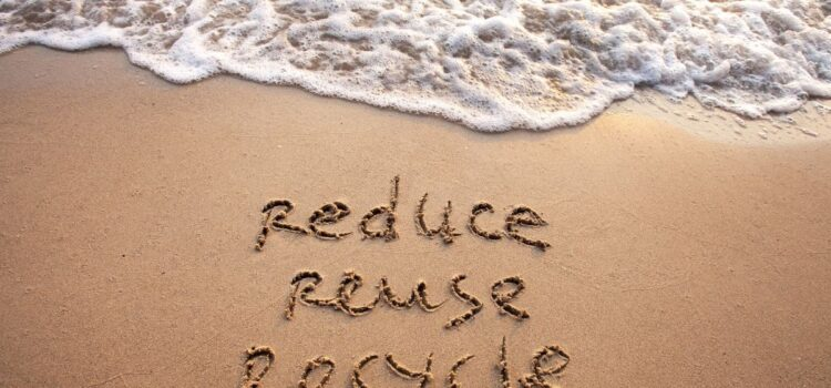 Best Ways to Live More Sustainably