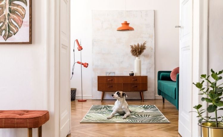 Simple Ways To Decorate Your Den