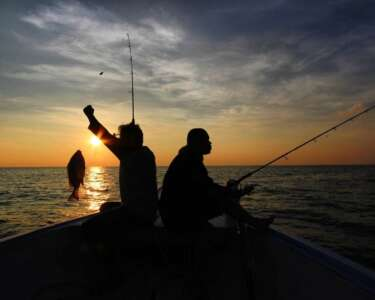 5 Saltwater Fishing Equipment Must-Haves